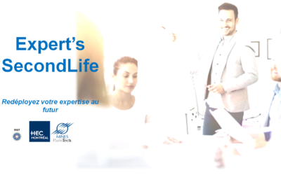 Expert's Second Life